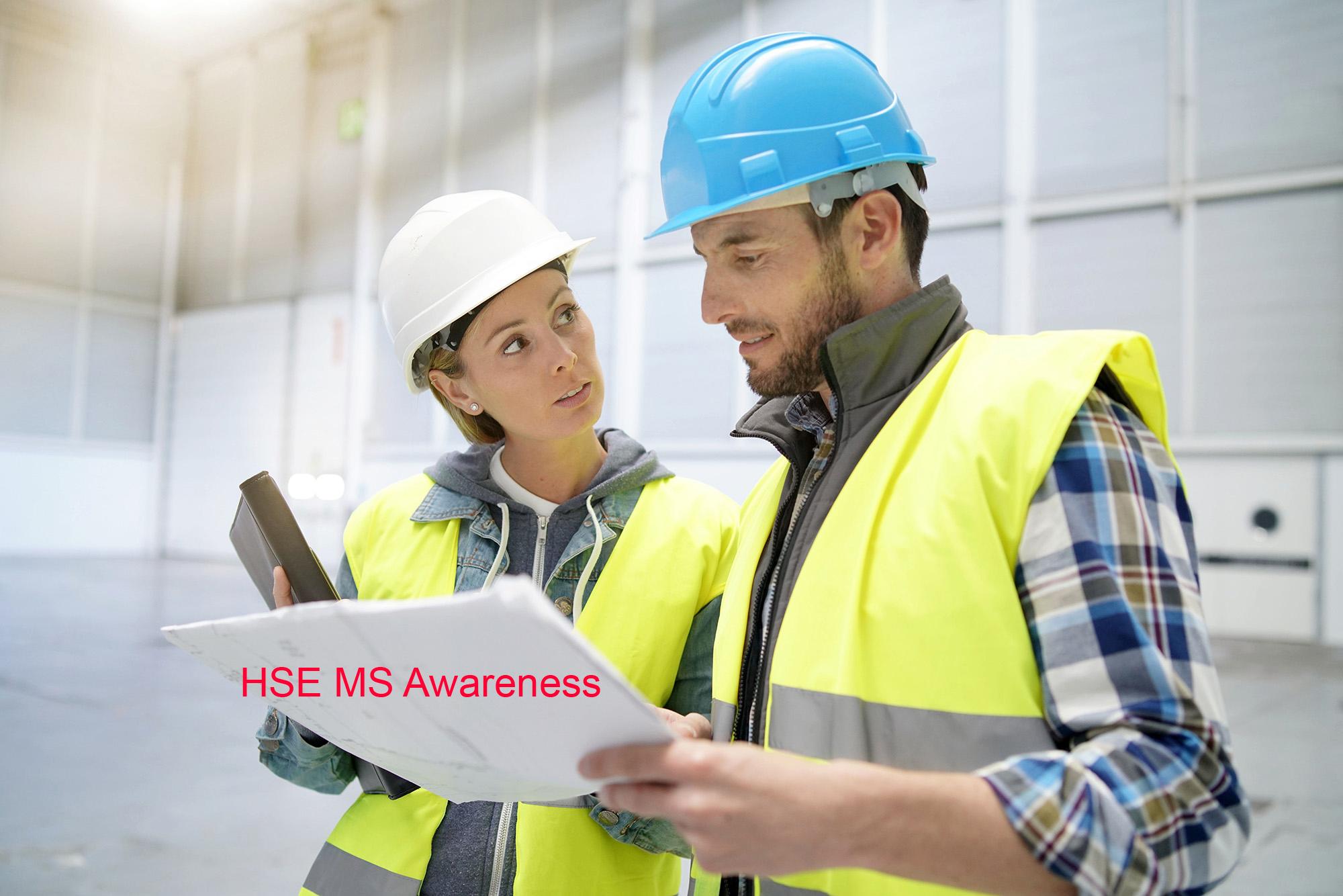 HSE MS Awareness