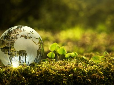 ISO 14001 Environmental Management System Lead Implementer