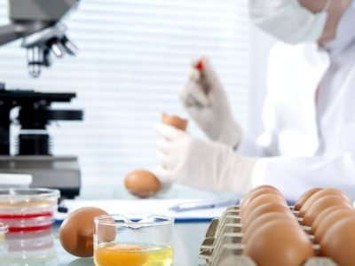 ISO 22000 Food Safety Management System Lead Implementer