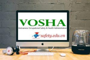 Partner VOSHA